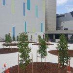 Crowne Plaza after (Medium)