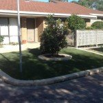 Somerville Synthetic grass (4)